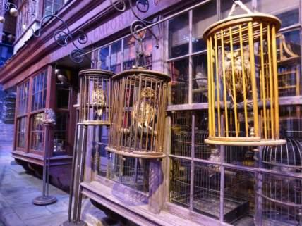 Owls for dayyyz - - Warner Bro's Studio Tour, London