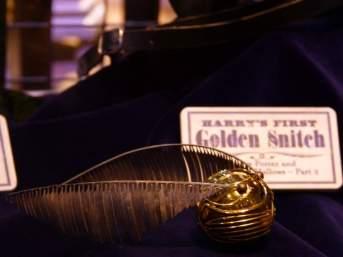Harry's First Golden Snitch - Warner Bro's Studio Tour, London